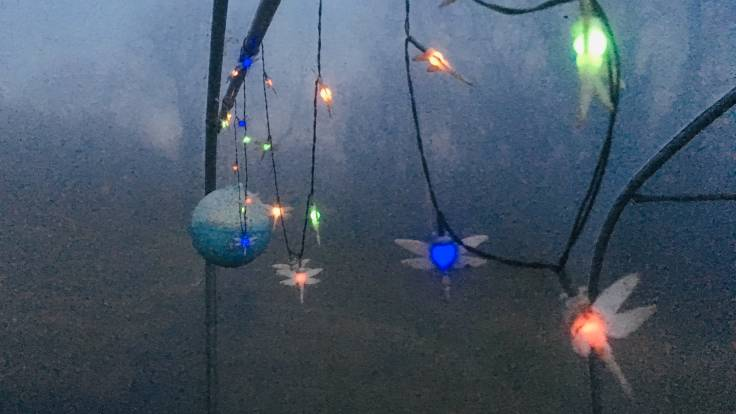Dragonfly fairylights in the polytunnel