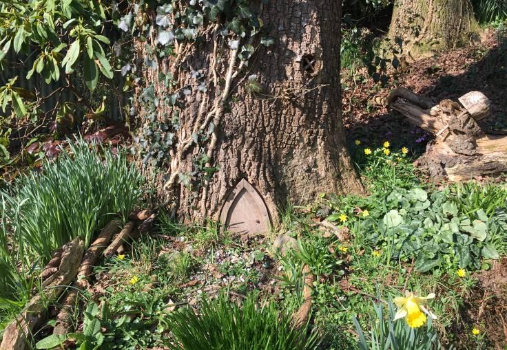 Pixie house door at bottom of tree