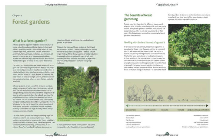 Screenshot of inside of forest garden book