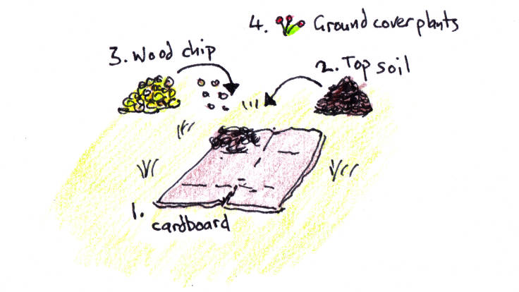 Illustration showing order of creating cardboard propagation bed