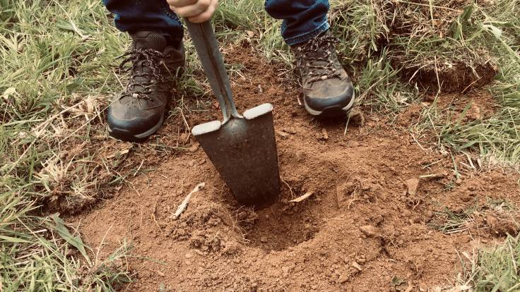 Pair of feet and digging spade in very dry soil
