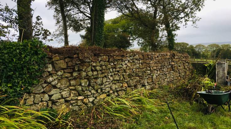 Stone wall, trees behind