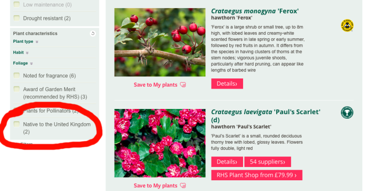 Screenshot of RHS Plant Finder page