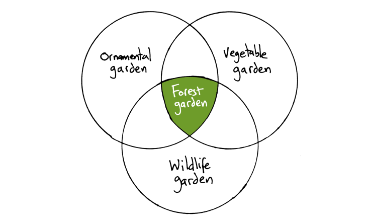 Hand-drawn Venn diagram. Ornamental garden, vegetable garden & wildlife garden in circles, forest garden in intersection.