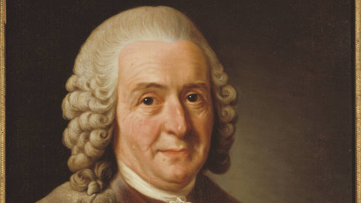 Painting of distinguished 18th Century academic