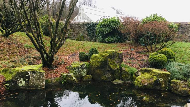 Pond lined with stones, grassy bank and pruned tree