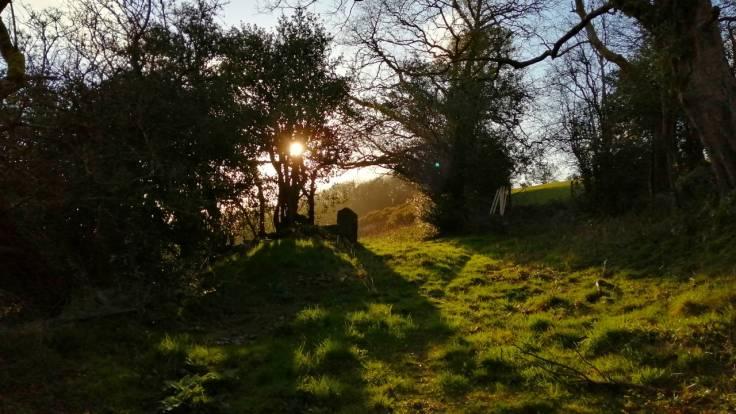 Sun through a gate