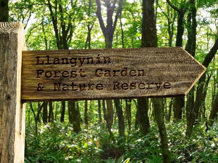 "Wooden signpost with words ""Llangynin Forest Garden & Nature Reserve"""