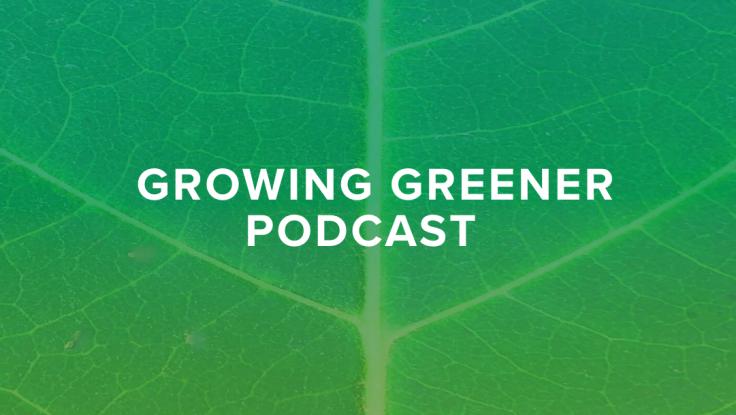 Screenshot of Growing Greener graphic