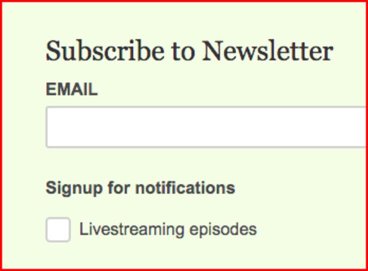 Screenshot of newsletter signup form