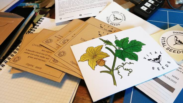 Packets of seeds and illustrated leaflet on a messy desk