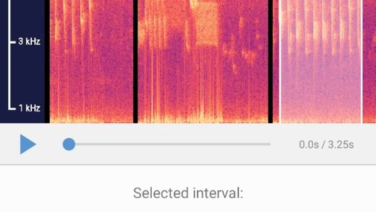 Screenshot of BirdNET app waveform selection facility