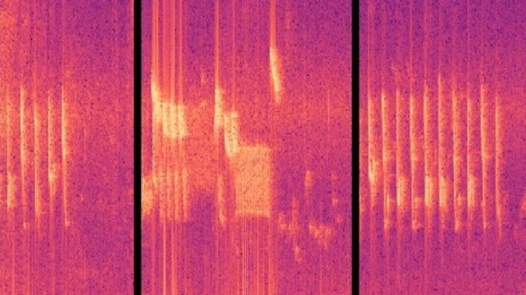 Screenshot of sound file spectral waveform