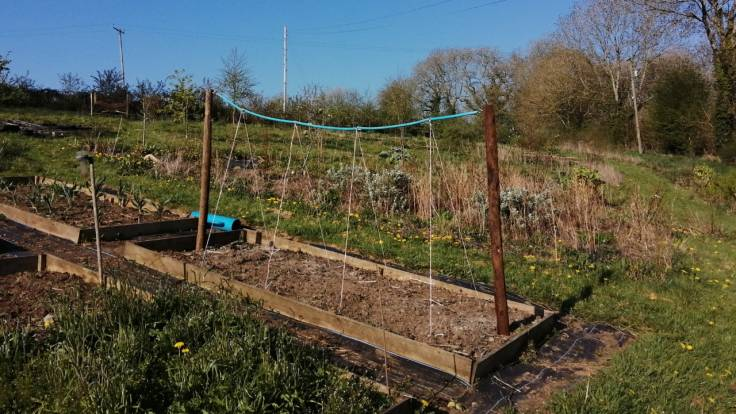 Sturdy posts and taut string on raised bed
