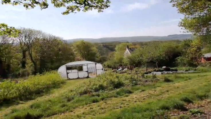 Screenshot of video, showing valley, polytunnel & forest garden