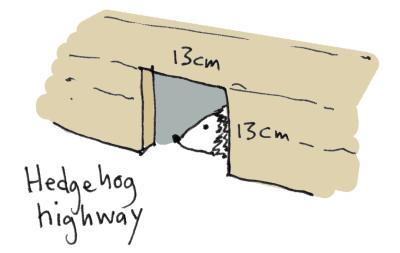 Illustration of hole in fence for hedgehog access AKA Hedgehog Highway