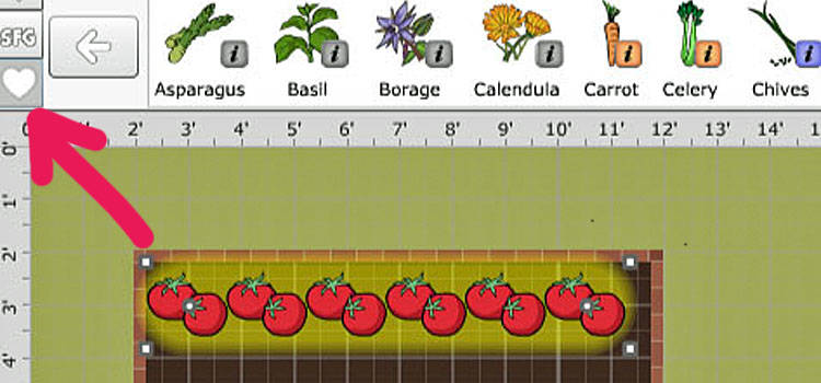 Companion Planting In The Garden Planner