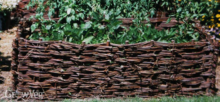 Willow and hazel wicker raised beds for vegetables