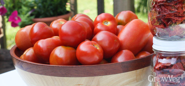 https://res.cloudinary.com/growinginteractive/image/upload/q_74/v1492185824/growblog/harvested-tomatoes-2x.jpg