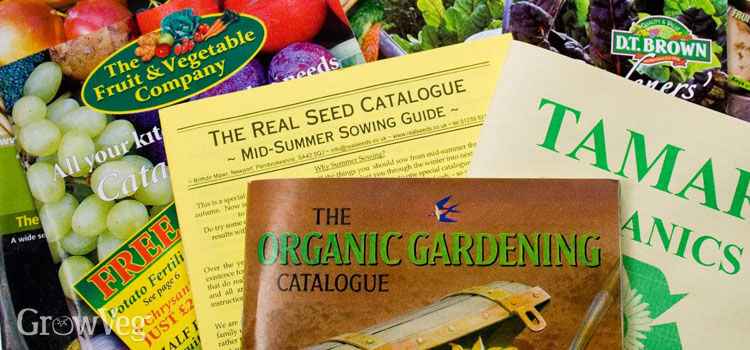Tracking Down the Best Garden Seeds