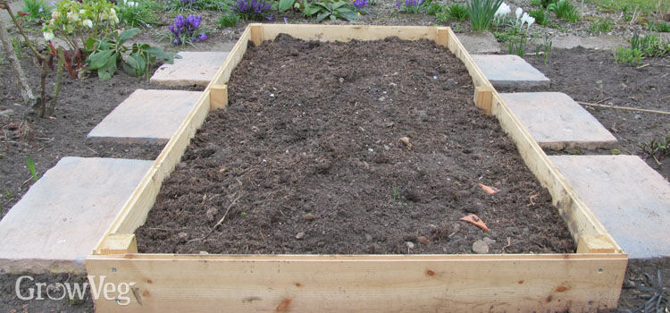 Raised Garden Bed Farming