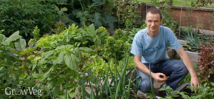 Jeremy's vegetable garden