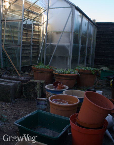Greenhouse and plant pots