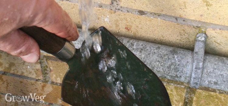 Washing a trowel