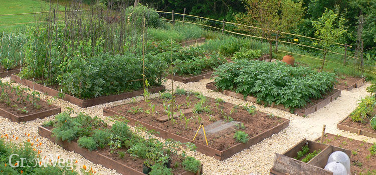 A well planned vegetable garden