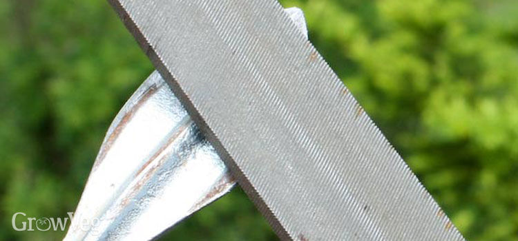 Sharpening a cobrahead weeder