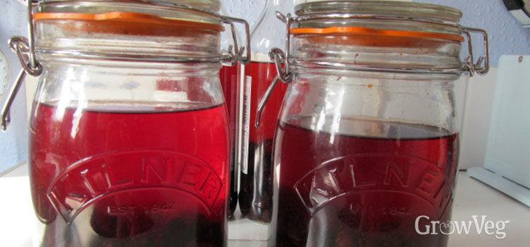 Making sloe gin