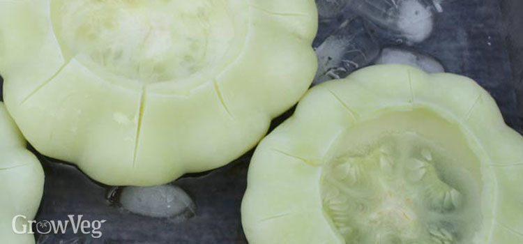 Freezing blanched squash