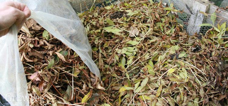 Leafmold bin
