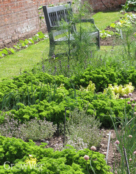 Planning a New Herb Garden Part 1 – Planning A Herb Garden