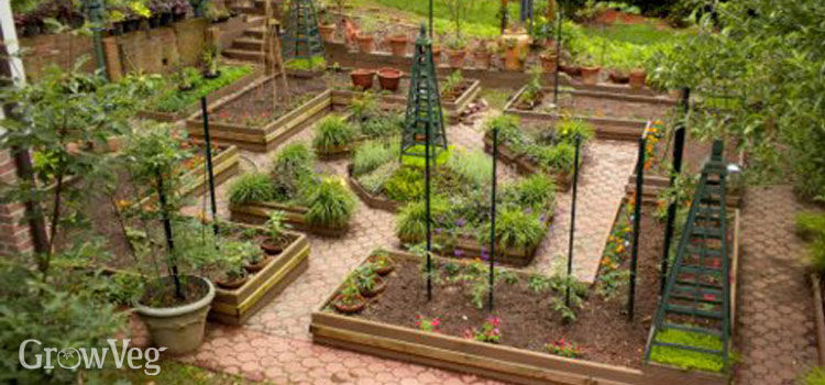Garden Design Triangular Plot how to design a potager garden