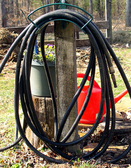 Black rubber hose warms up water for watering
