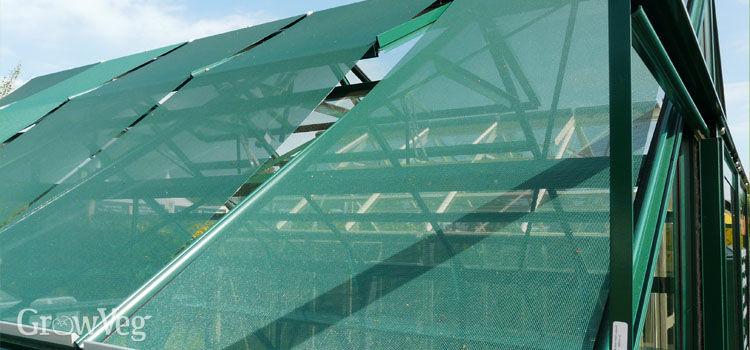 Greenhouse shading