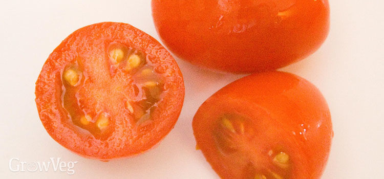 Tomatoes for seed saving