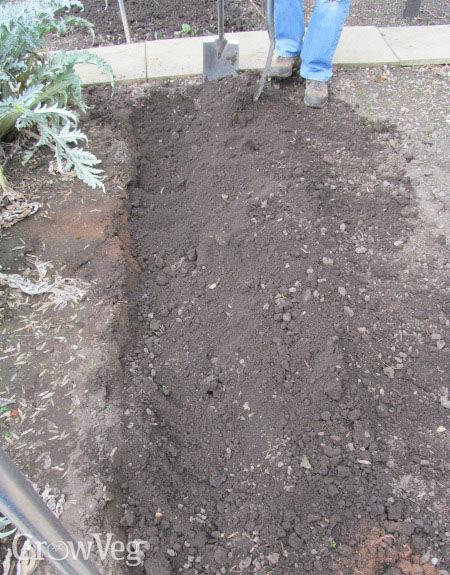 Digging a vegetable plot
