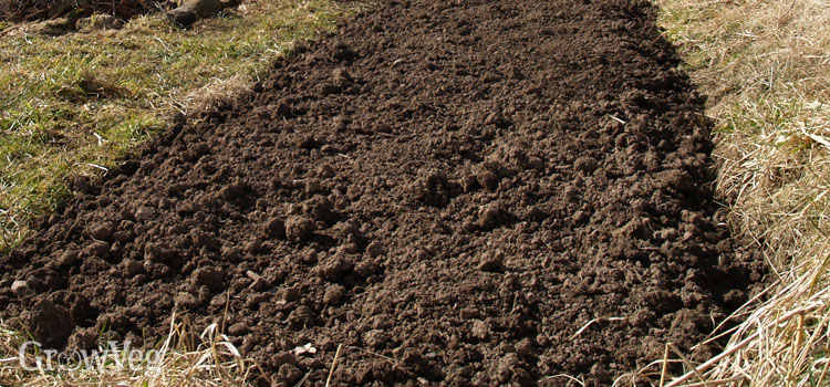 Vegetable bed dug over