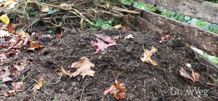 Compost heap in autumn