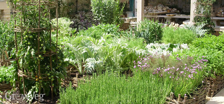 How to plan a vegetable garden design your best garden layout workwithnaturefo