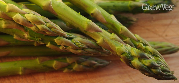 https://res.cloudinary.com/growinginteractive/image/upload/q_80/v1449588529/growblog/asparagus-on-wooden-chopping-board-2x.jpg