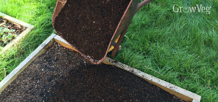 Adding homemade compost to a raised bed