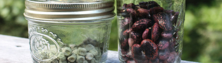 Planning for Seed Saving
