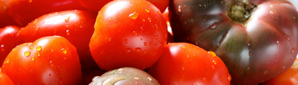 How to Grow Tomatoes with Great Flavour