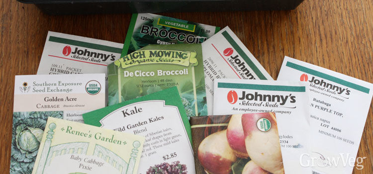 Choosing seeds for your autumn garden