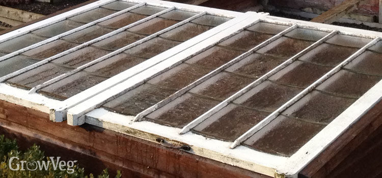 Traditional cold frame made from a window