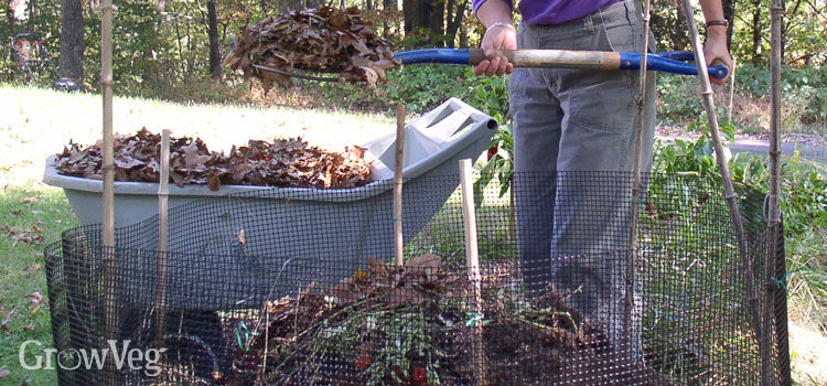Composting fallen leaves in a leafmold bin