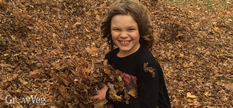Boy playing with fallen leaves